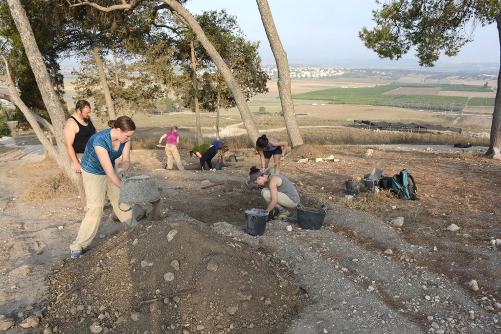 Excavation in Israel